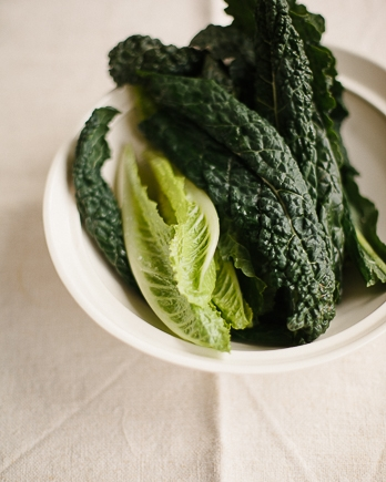 Romaine lettuce and lacinato kale for kale salad