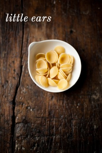 orecchiette-little ears