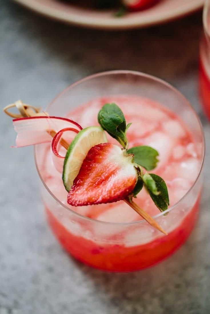 Strawberry Rhubarb Gin Rickey Cocktail