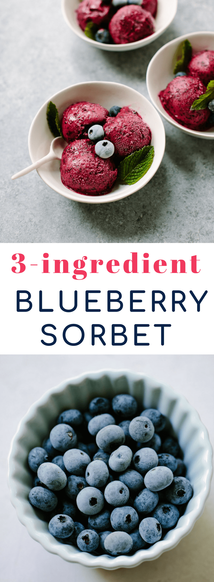 Easy Lemon Blueberry Sorbet