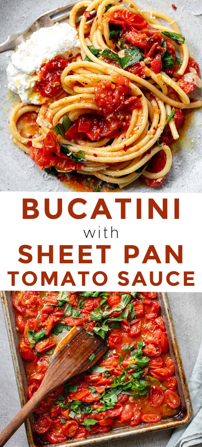 Bucatini Pasta with Spicy Sheet Pan Tomato Sauce - a quick, fresh recipe for amatriciana sauce.