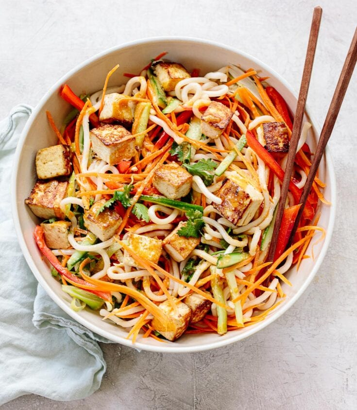 Vegetarian Udon Noodle Bowl with Tofu