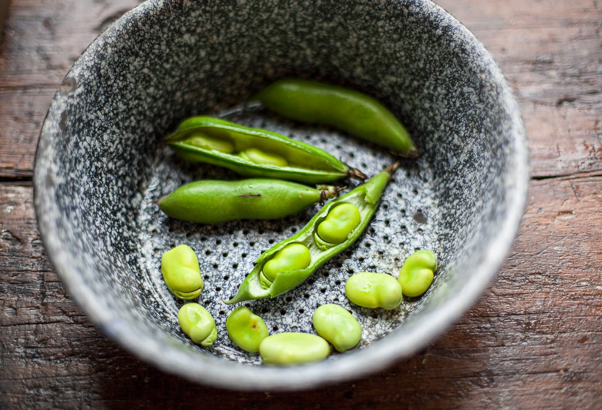 Shelling fresh green fava beans, in a blue speckled antique colander on a wood counter.