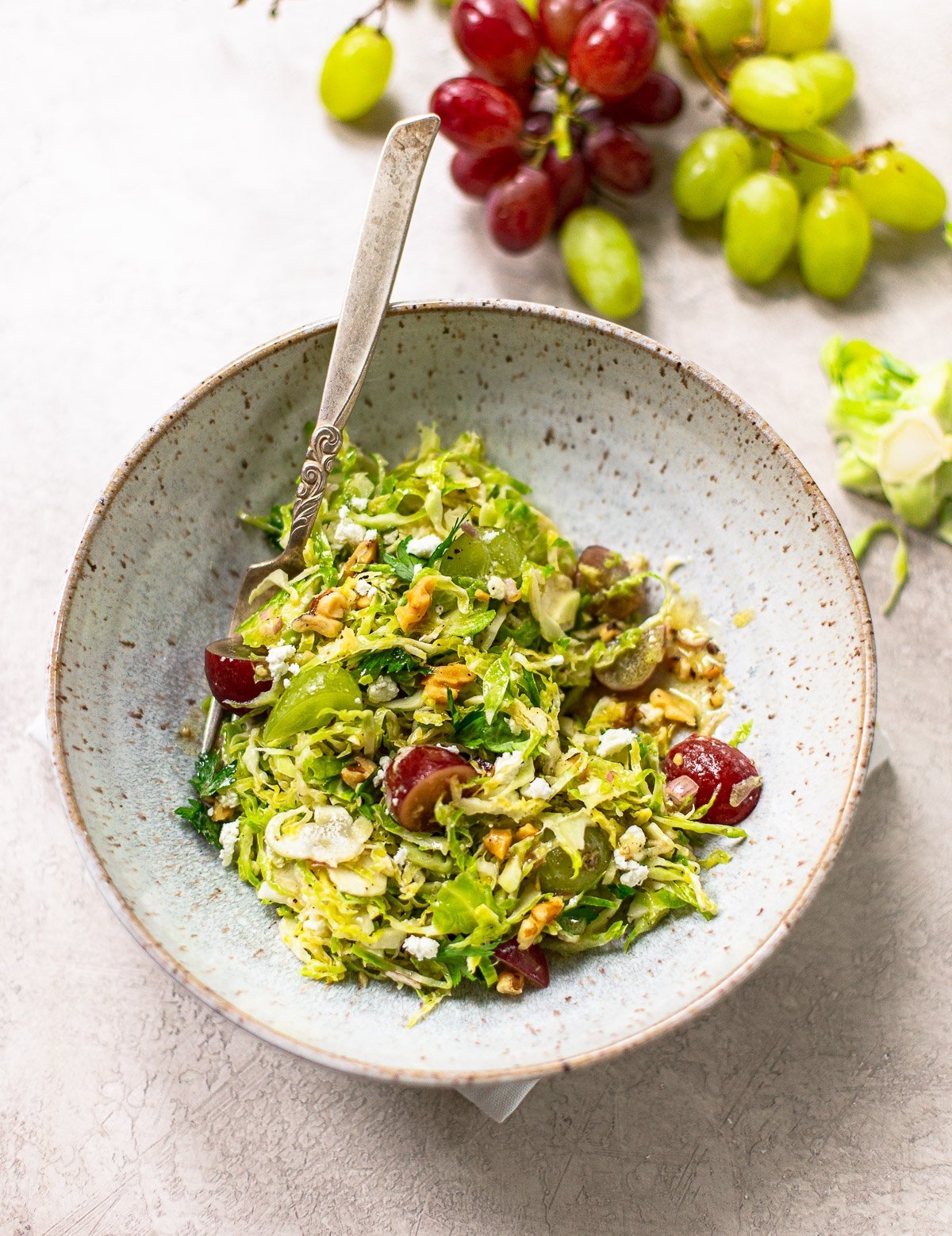 A photo of a gray speckled bowl with shaved brussles sprouts salad with red grapes and a fork on the side.